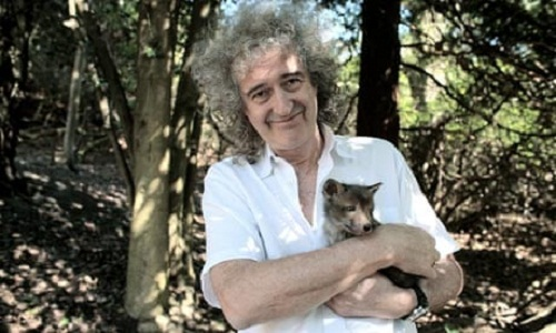 -Brian May-Immagine-