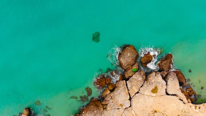 barriera corallina porto rosso monopoli