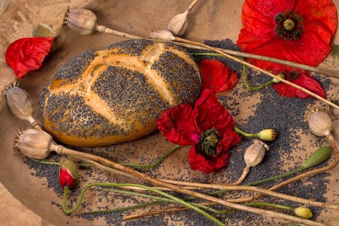 semi di papavero pane
