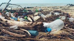 L'inquinamento dei mari generata dalla plastica monouso