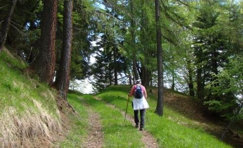 """cammino, Fonte foto: pagina FB """"Il Cammino delle Dolomiti""""."""
