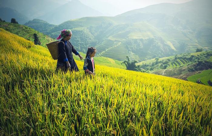 giornata mondiale della lotta contadina madre figlia