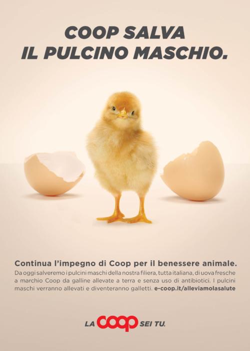 Uova cruelty free Coop