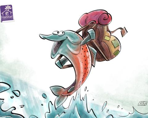 giornata pesci