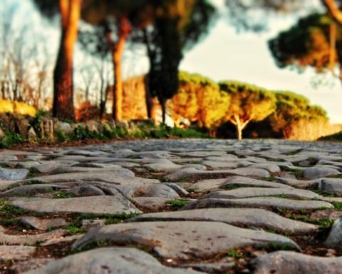 Roma green