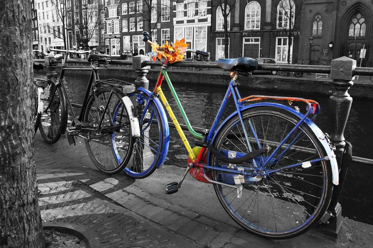 La bicicletta salva futuro: in città niente benzina, parcheggi a pagamento e smog.