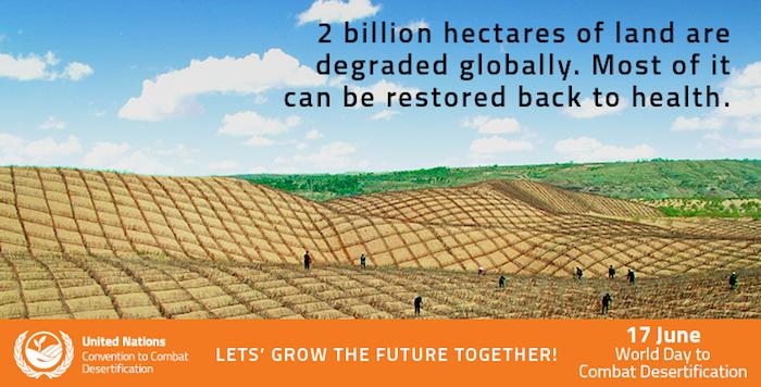 lotta contro la desertificazione degrado suolo