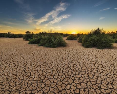 deserto siccità