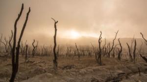 Inquinamento atmosferico protagonista della giornata mondiale dell'ambiente