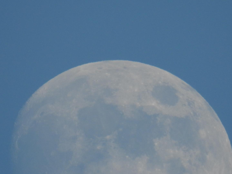 Apollo 11. Il fascino della Luna