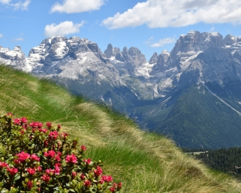 "Fonte foto: pagina FB ""Parco Naturale Adamello Brenta"""