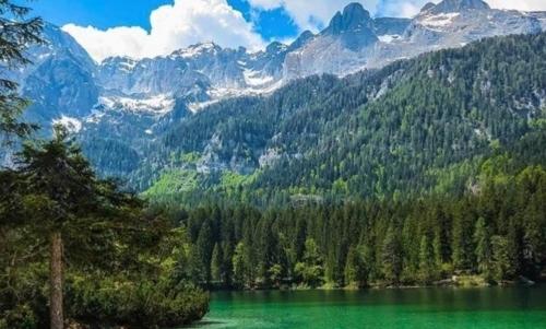 """Giro della Livezza Fonte foto: pagina FB """"Parco Naturale Adamello Brenta"""""""