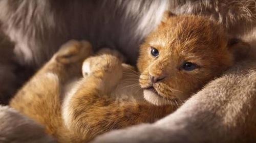 -Il Re Leone-film-