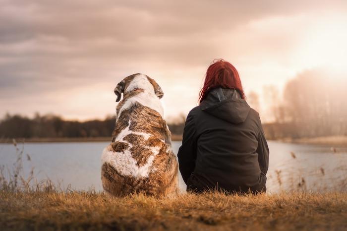 giornata mondiale del cane amicizia