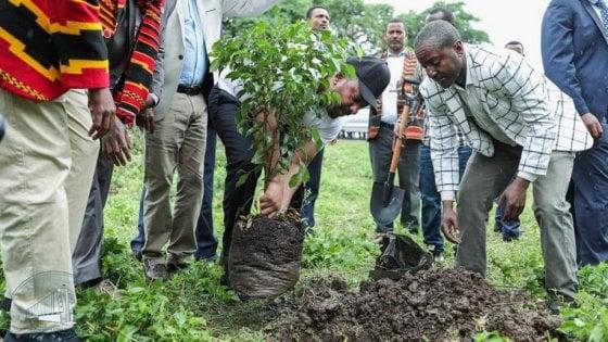 etiopia piantare alberi