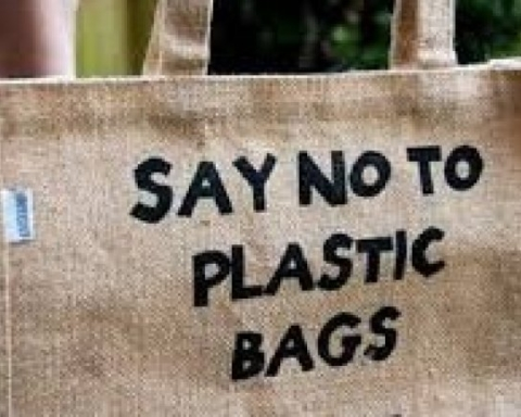Plastic Bag Free Day