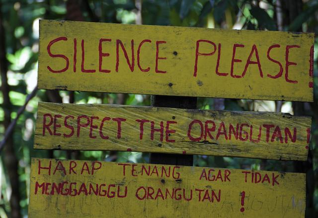 volontariato ambientale conservazione