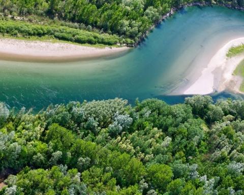 Amazzonia d'Europa fiume Drava foto di Goran Šafarek