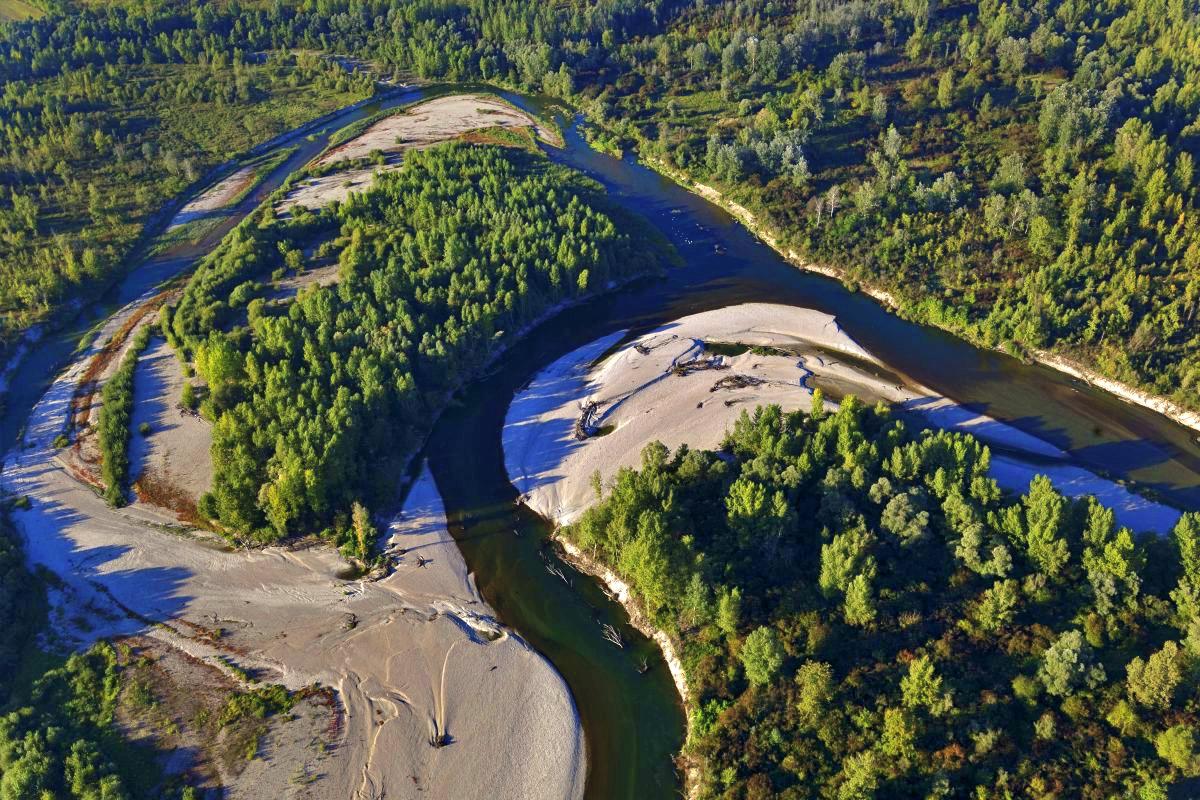 Amazzonia d'Europa Drava in Croazia foto di Goran Safarek