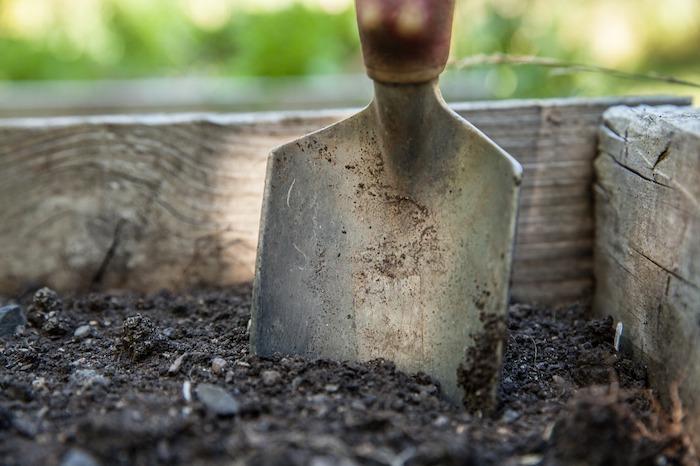 giornata mondiale del suolo agricoltura