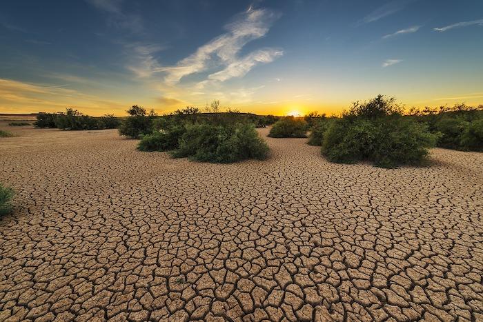 giornata mondiale del suolo desertificazione