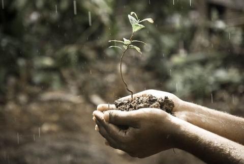 giornata mondiale del suolo pioggia