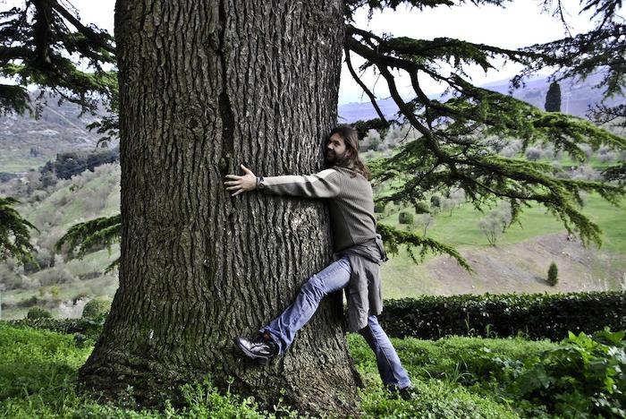 Giornata nazionale degli alberi silvoterapia