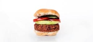 burger vegano a base vegetale