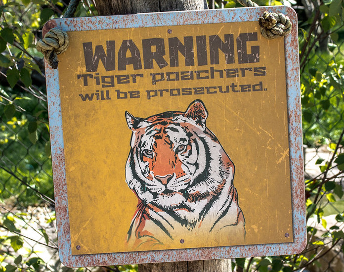 Crimini Ambientali foto Tim Evanson Flickr