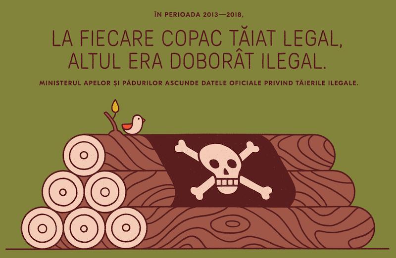 Greenpeace Romania deforestazione disboscamento illegale