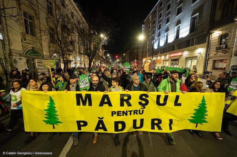 Marcia-per-le-foreste-a-Bucarest-Romania-novembre-2019-Deforestazione-Romania.jpg