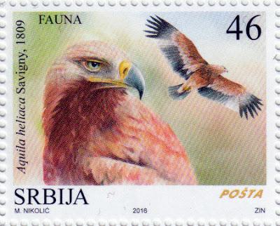 aquila imperiale orientale francobollo Serbia