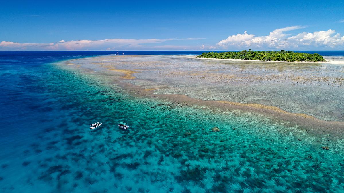barriera corallina coralli Sangalaki Island, East Kalimantan, Indonesia.