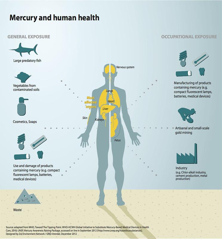 mercurio e salute umana foto Grid Arendal Flickr