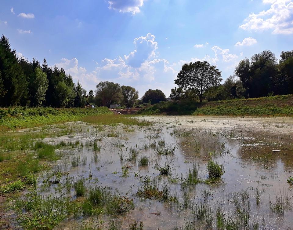 zone umide Ungheria