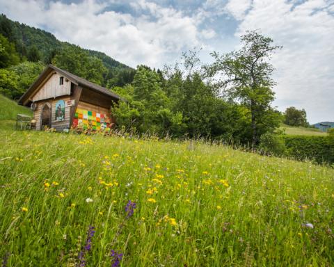apiturismo slovenia