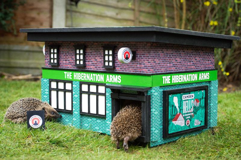 pub per ricci the hibernation arms Camden town brewery Londra