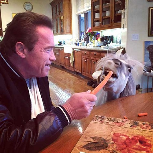 -Schwarzenegger-Anthony Hopkins-