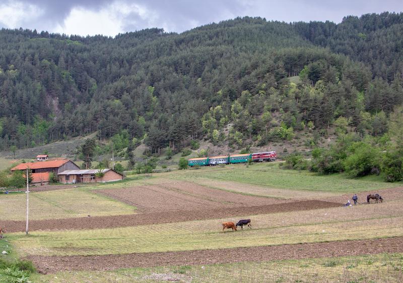 Treno-Bulgaria1.jpg