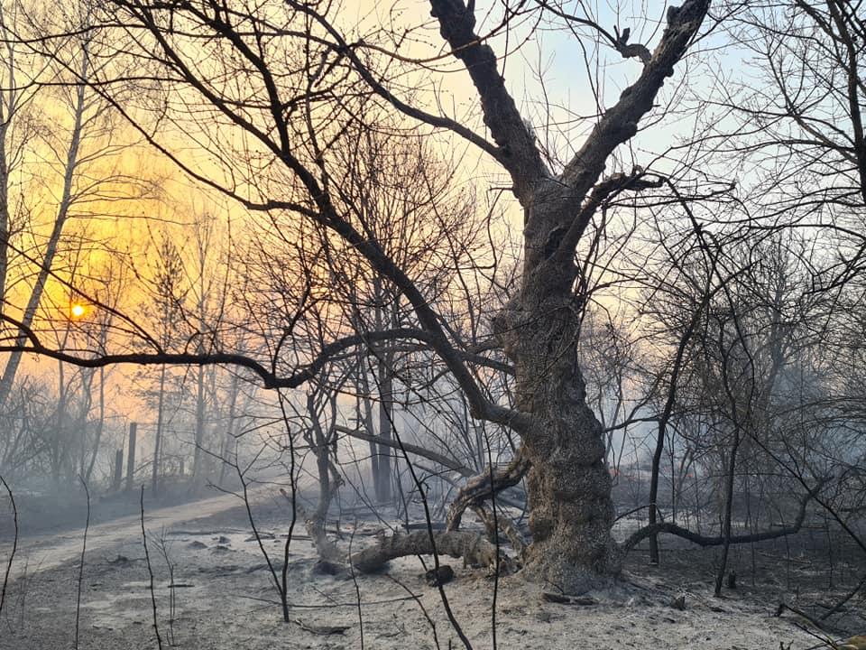 Incendi a Chernobyl foto Yaroslav Yemelianenko Chornobyl Tour