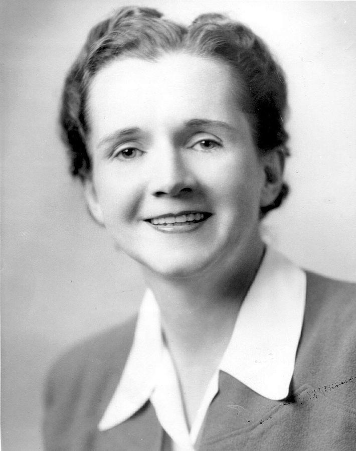 """Rachel Carson, autrice di """"Silent Spring"""", il manifesto del movimento"""