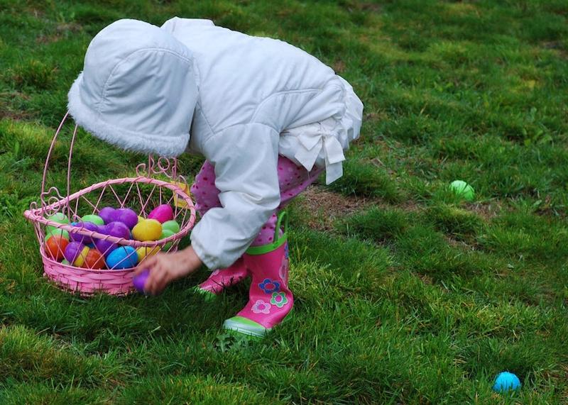 coniglietto pasquale caccia all'uovo