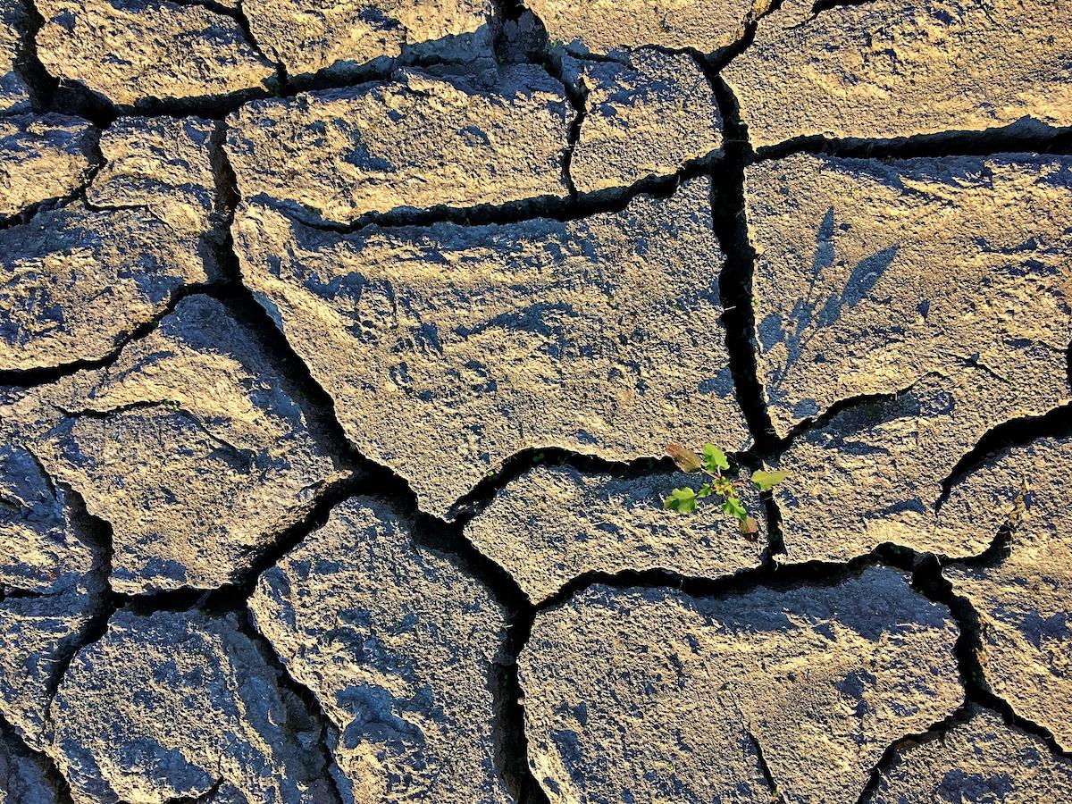 Emergenza climatica nei Balcani ondate di calore foto di Francesco Rasero