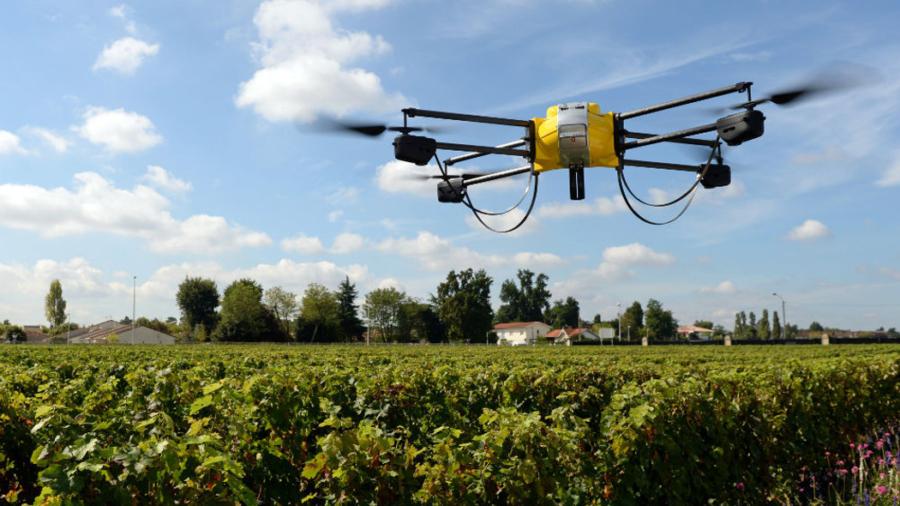 Dieta caporalato free Slow Food Youth Network, tecnologia innovazione in agricoltura