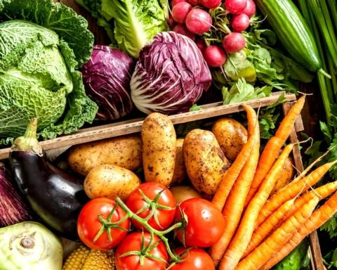 cesto frutta e verdura dietacaporalatofree slow food youth network carote pomodori melanzane cavolo radicchio ravanelli patate finocchi