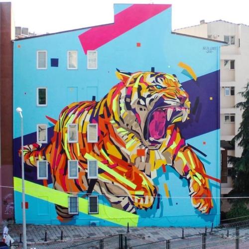 Giornata-internazionale-della-tigre-Arlin-Istanbul-500x500.jpg