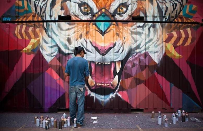 Giornata-internazionale-della-tigre-Farid-Rueda-778x500.jpg
