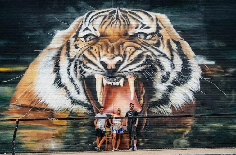 Giornata-internazionale-della-tigre-Graffiti-Life-760x500.jpg