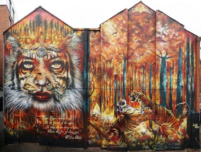 Giornata-internazionale-della-tigre-Jim-Vision-659x500.jpg