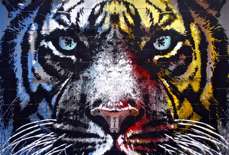 The cage of tigers has new colors now. Location: Street Art Museum - Ex Zoo, Torino, Italia. Artista: Orticanoodles (Facebook @orticanoodles)